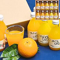 和歌山県産柑橘飲みくらべ