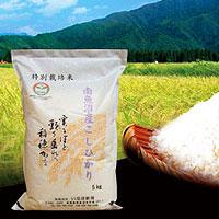 南魚沼産コシヒカリ特別栽培米