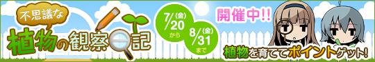 2012年夏休み自由研究キャンペーン 不思議な植物の観察日記