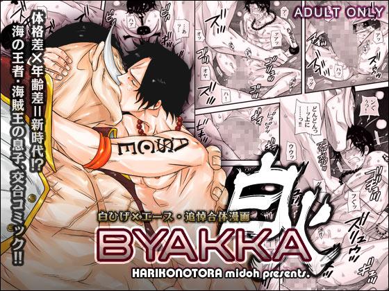 BYAKKA〜白火〜